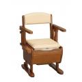 Aron AR-750L 坐便椅